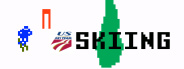 U.S. Ski Team Skiing